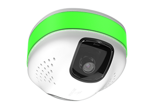 Video Detection Camera.png